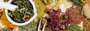 Цены на Лекарственные травы, фото
