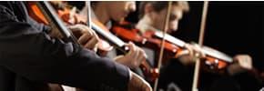 Цены на Оркестровые инструменты, фото