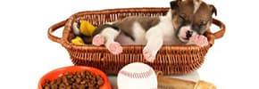 Цены на Товары для собак, фото