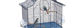 Цены на Товары для птиц, фото