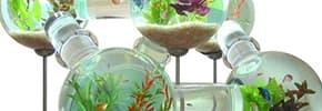 Цены на Товары для рыб и рептилий, фото