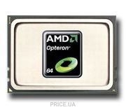 Фото AMD Opteron 6174