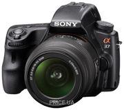 Фото Sony Alpha SLT-A37 Kit