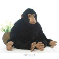 Фото Hansa Шимпанзе мама 57 см (2329)