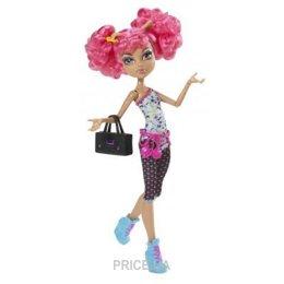 Mattel Monster High Хоулин Вульф из серии Класс танцев (Y0431)