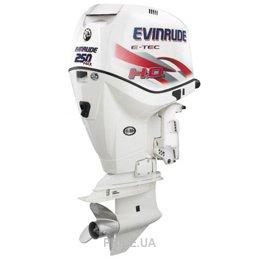 Evinrude E 250 CZ ICON