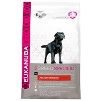 Фото Eukanuba Adult Labrador Retriever 2,5 кг