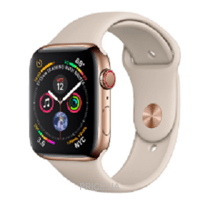 Фото Apple Watch Series 4 (GPS + Cellular) 40mm Gold Stainless Steel Case with Stone Sport Band (MTUR2)